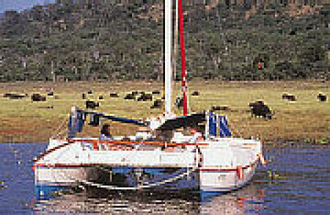 Sail Safaris