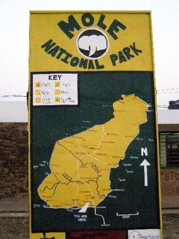Mole National Park